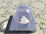 Seaside Paperweight